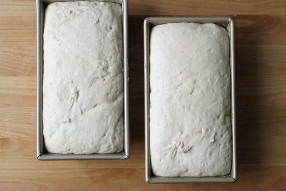 risen English muffin bread