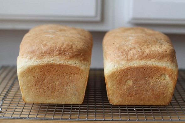 baked no knead English muffin bread