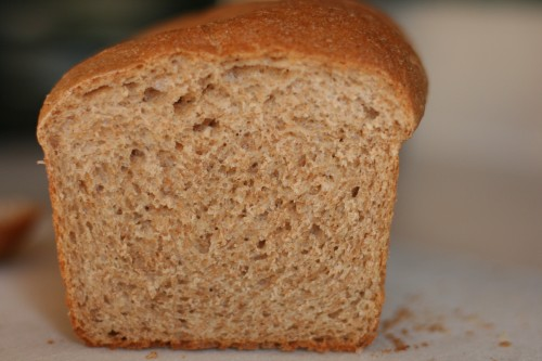 ... of a cook s recipe for whole wheat bread theirs has wheat germ and