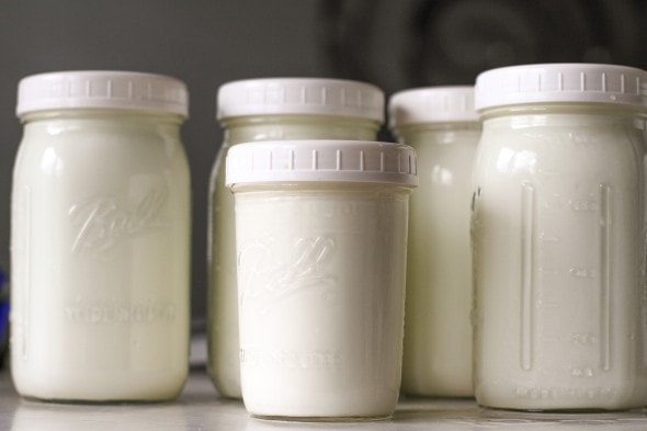 ball plastic lids for yogurt jars