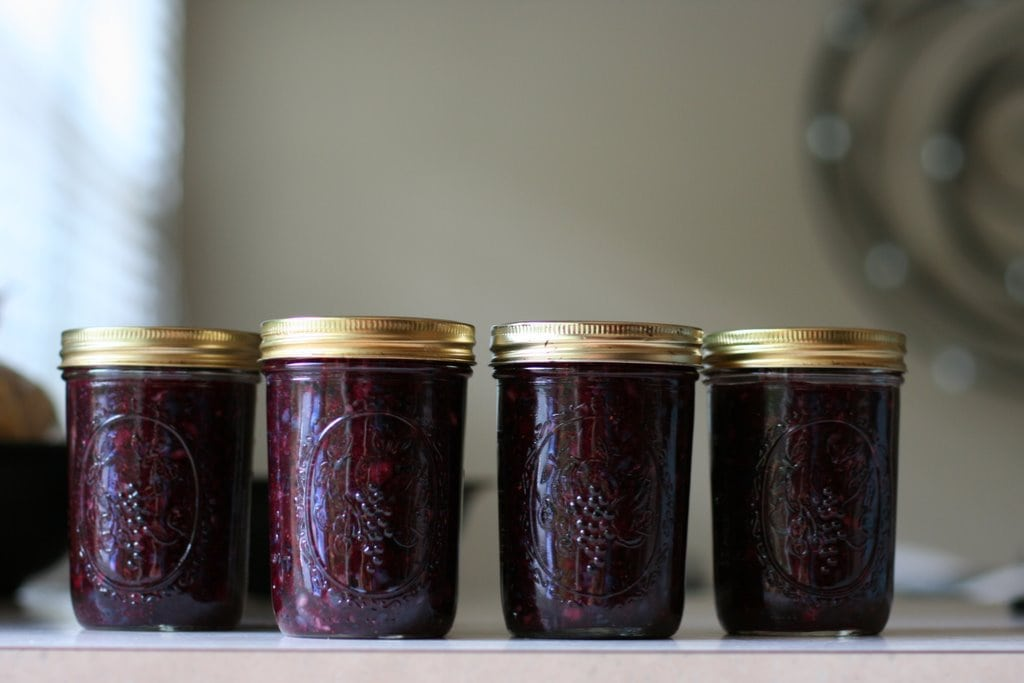 Why Freezer Jam Rocks (plus, a Blueberry Jam recipe) - The Frugal Girl