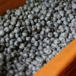 Grocery Spending/Menu Plan | I am in blueberries.