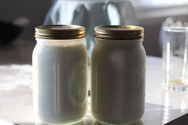 Two jars of homemade yogurt in Mason jars.