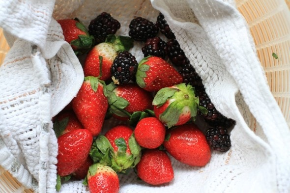 drying berries