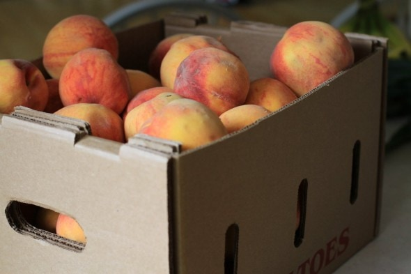 discounted box of bruised peaches