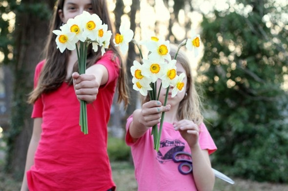 Two girls holding daffodil bunches.