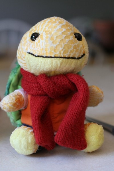 build a bear small fry turtle scarf
