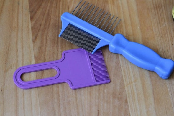 nix and rid lice combs