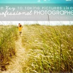 Two Photography Freebies!