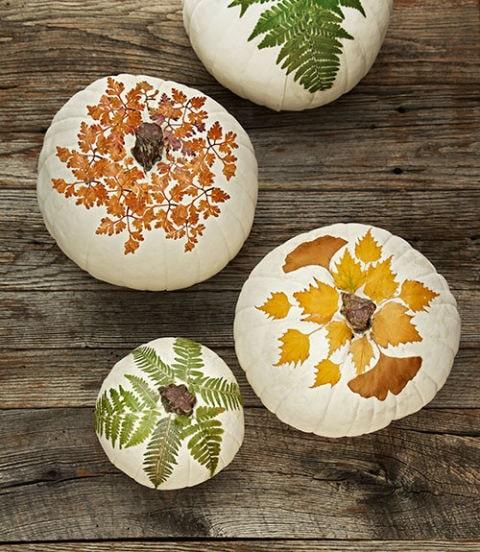 10 Classy Fall Crafts - Decoupage Pumpkins