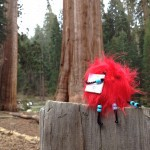 How we sent Mr. FG and Joshua on a frugal California adventure