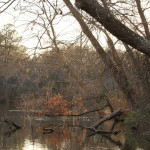 March lake scene