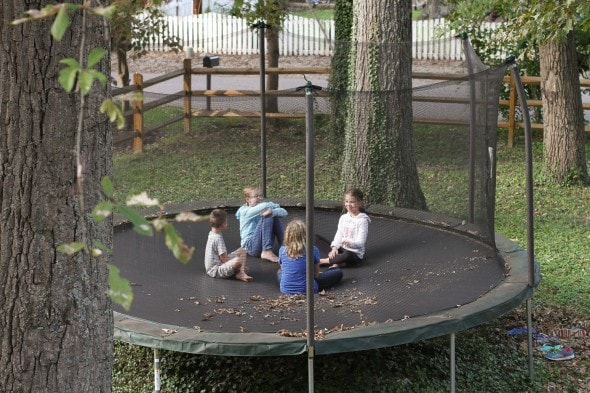 sonia zoe trampoline