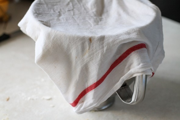 cover with wet tea towel