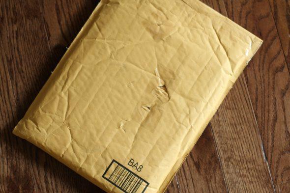 padded envelope package