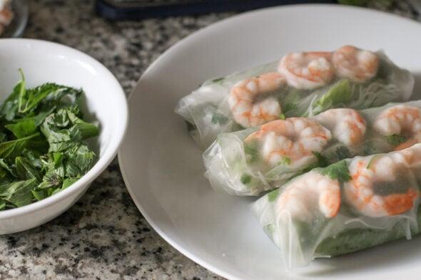 shrimp rice wraps