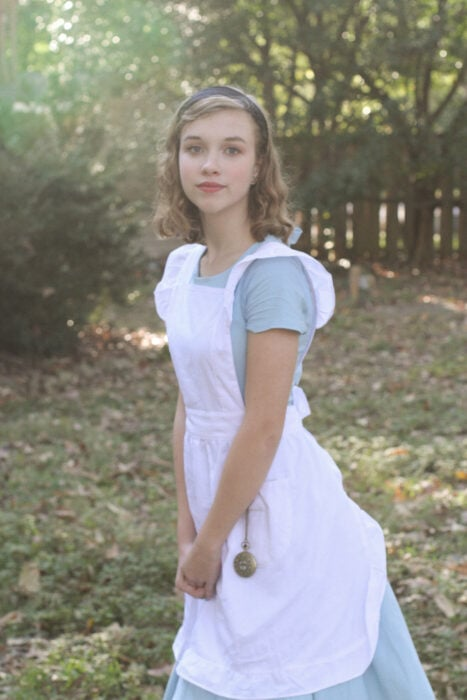 Alice in Wondeland costume