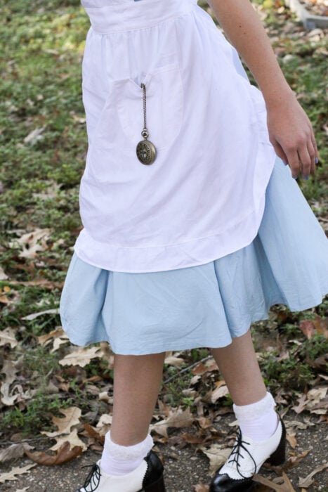 Alice in Wondeland costume