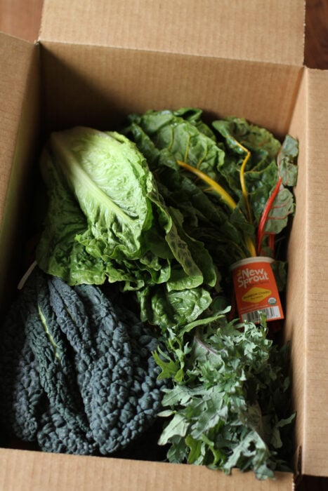 Washington's Green Grocer produce box