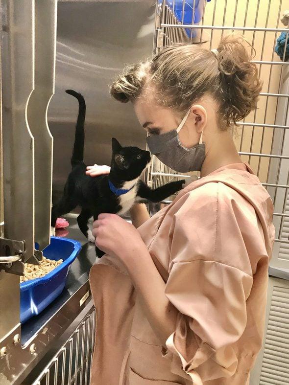 Sonia with a tuxedo kitten
