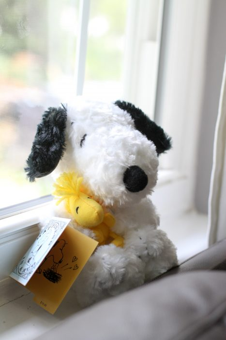 Stuffed Snoopy and Woodstock
