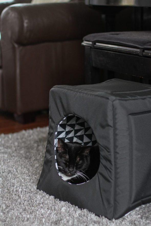 cat sleeping in black cat house