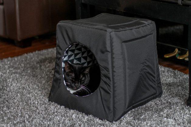 tuxedo cat in black cat house