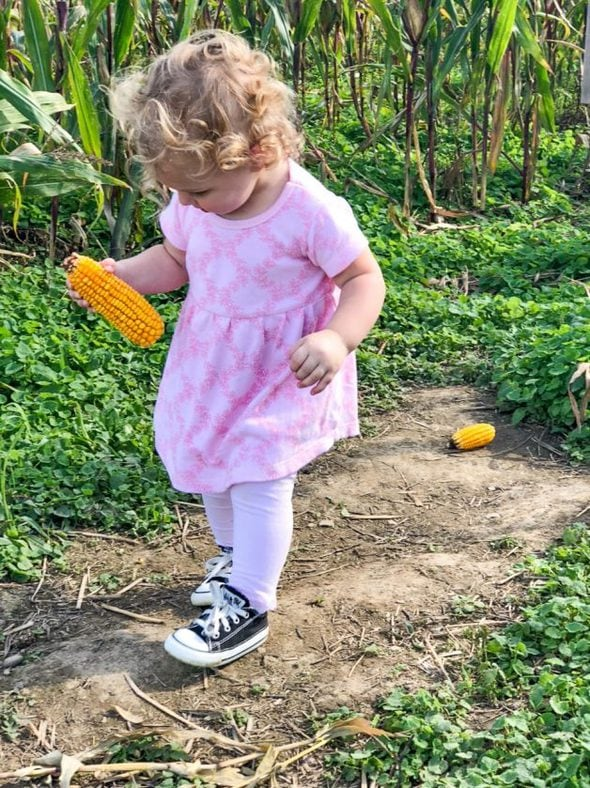 toddler in Converse