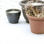 A light sprinkling of snow by three plant pots.