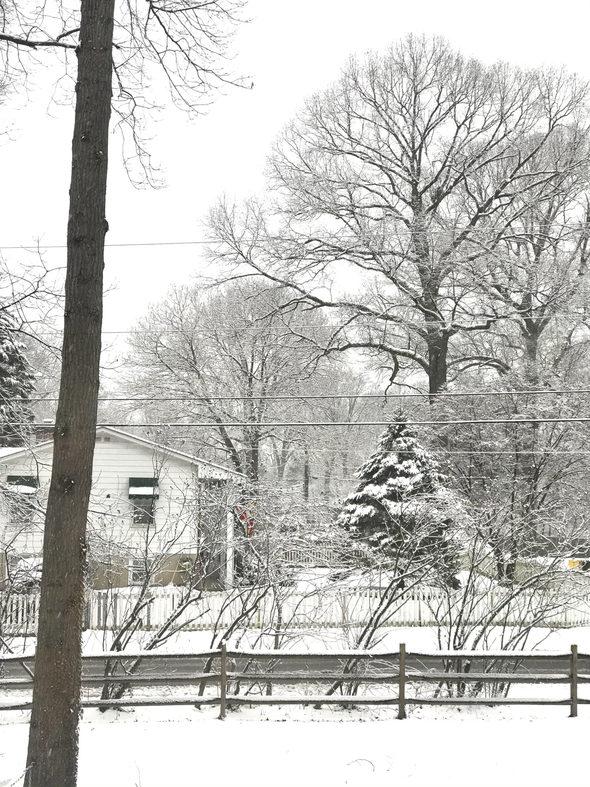 Snowy window view.