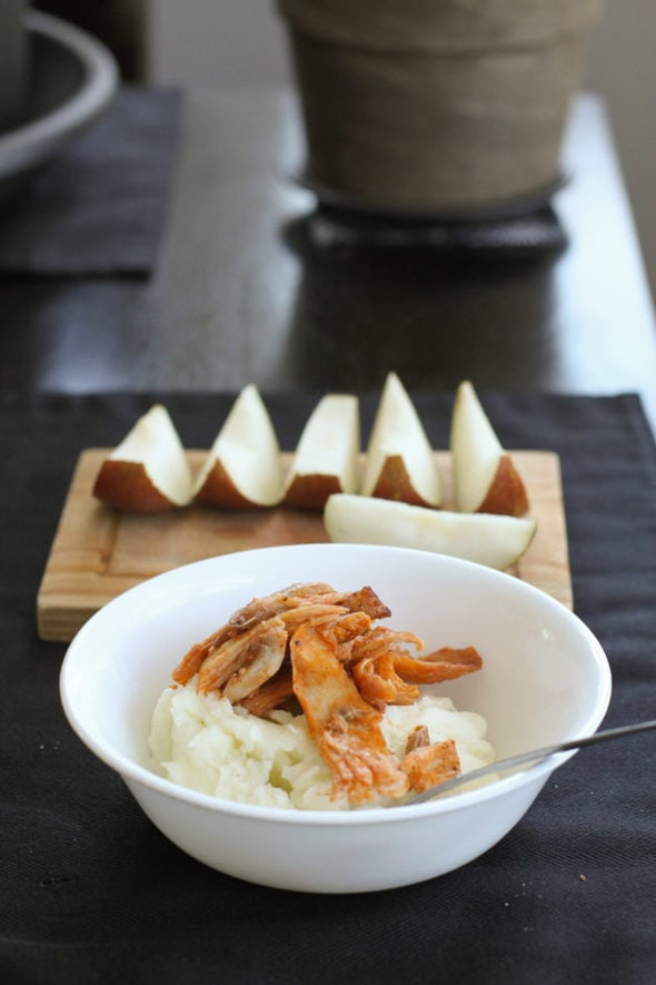 Mashed potatoes with pulled chicken.