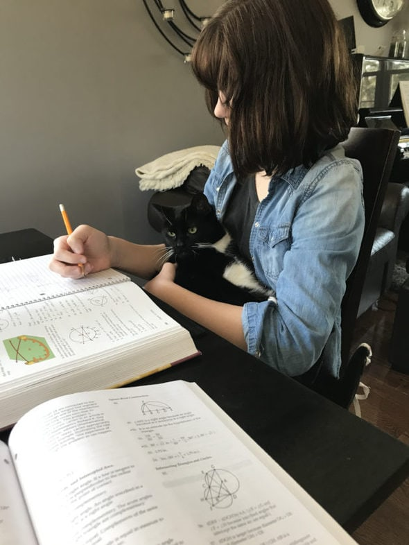 Zoe holding the cat while doing geometry homework.