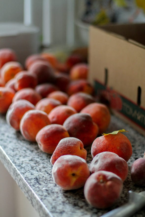Peaches spread out on a kitchen countertop.