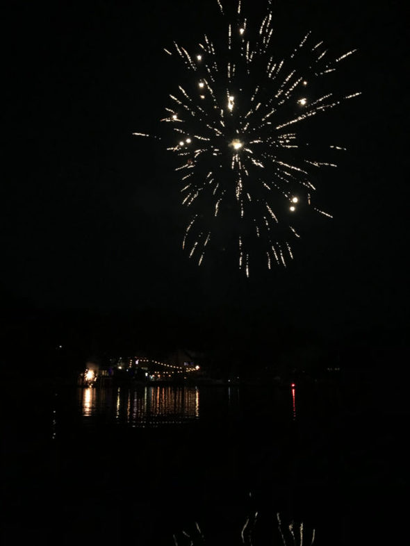 Fireworks exploding in a night sky over a river.