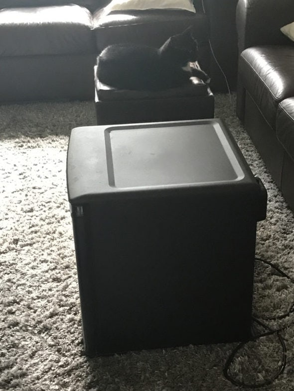 A dorm fridge sitting on the carpet.