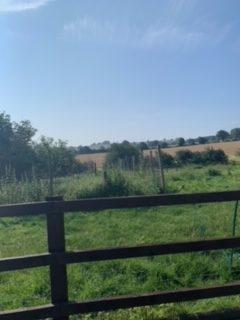 A farm fence under a blue sky.